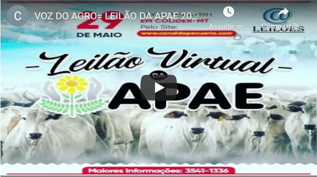 VOZ DO AGRO – LEILÃO DA APAE 2020 COLIDER MT