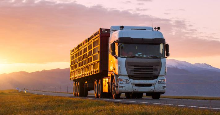 """Projeto da Top Norte FM """"BR 163 SEM COVID É TOP"""" promove atendimento a caminhoneiros na Região Norte de MT"""