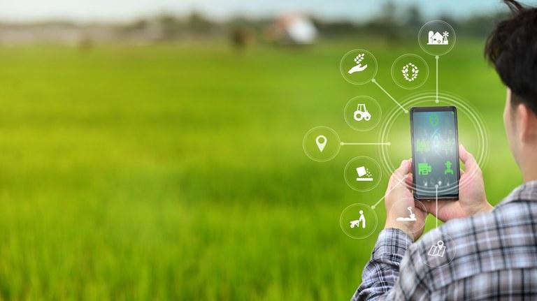 Ministério apoia desenvolvimento de tecnologias 4.0 para o agronegócio