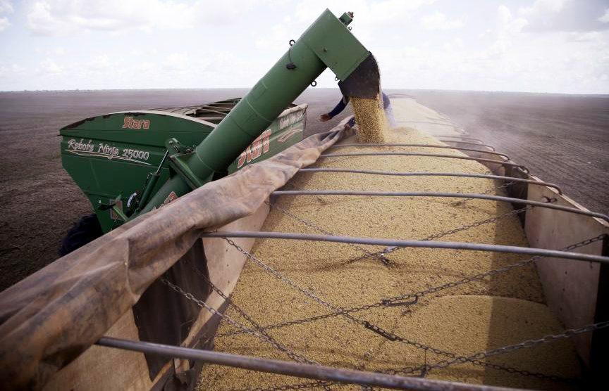 Soja disponível em Mato Grosso tem nova alta devido aos estoques limitados
