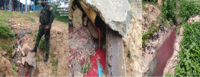 Batalhão Ambiental identifica crime ambiental em área de abate de frigorífico; embargo e multa de R$ 500 mil