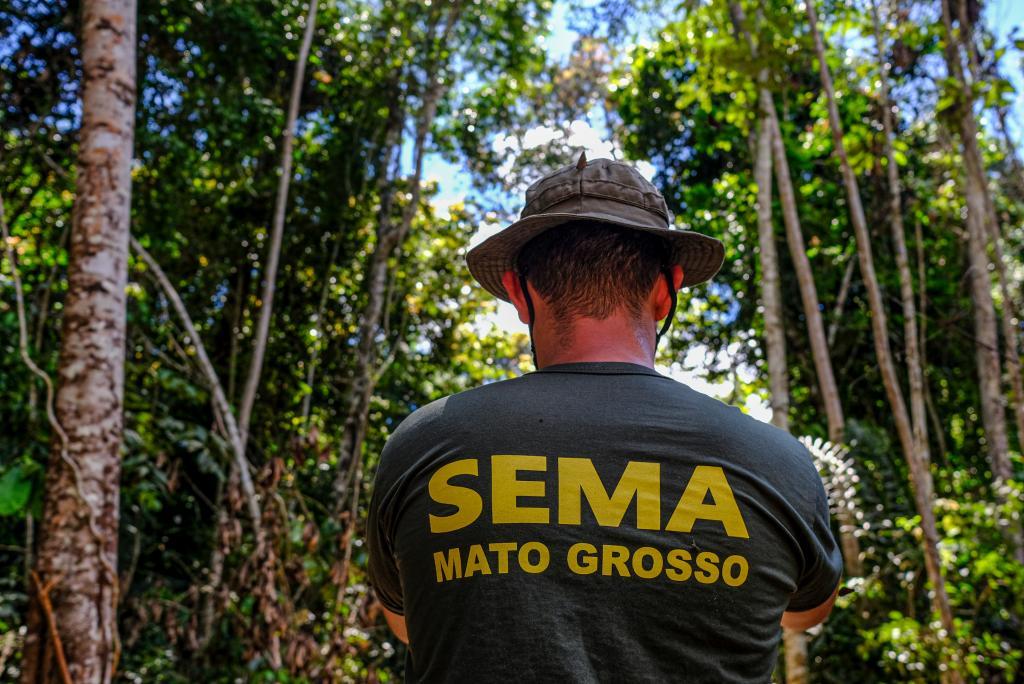 Mato Grosso apresenta redução de 31,5% nos alertas de desmatamento nos últimos 6 meses