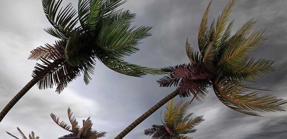 Ciclone provoca ventania no Sul