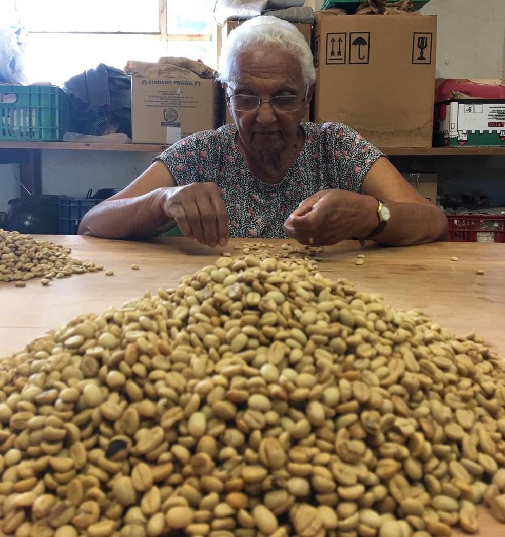 Gente do campo: conheça Ivone Baziolli, que estudou até a 4ª série e ajudou a desenvolver principais tipos de café no Brasil