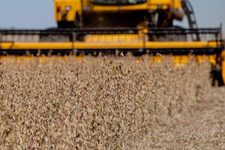 Colheita da soja avança com tempo firme e chega a 25%, diz AgRural