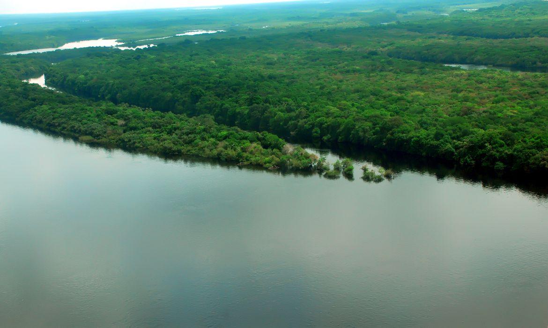 Plano do governo apresenta metas para reduzir desmatamento na Amazônia