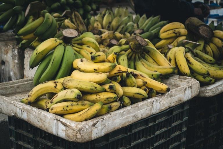 Publicada relação de produtos da agricultura familiar com bônus em abril