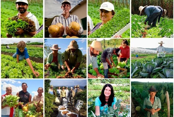 """28 de Julho: """"Dia do Agricultor"""""""
