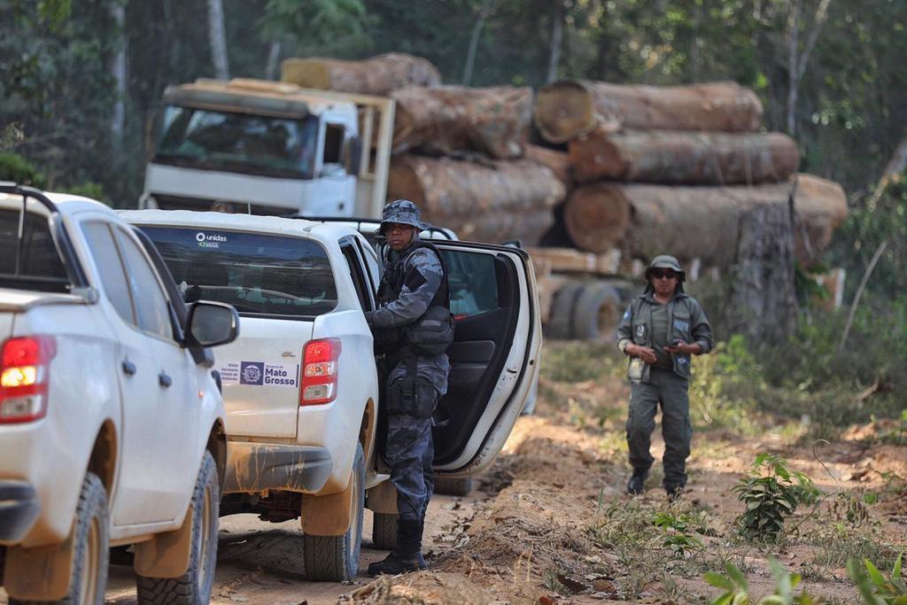 Municípios que mais desmatam em MT são principais alvos da Operação Amazônia