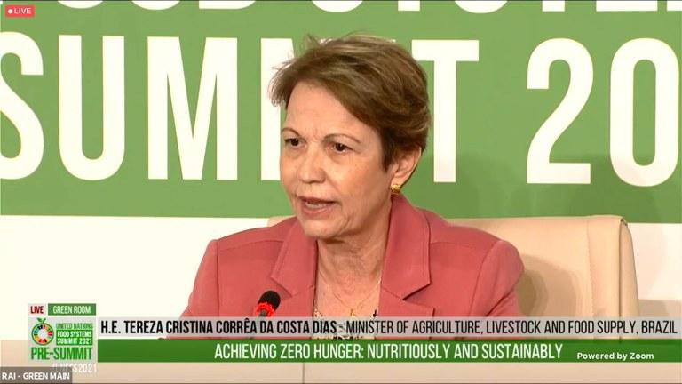 Ministra representa Brasil em evento da ONU que irá debater os sistemas alimentares globais
