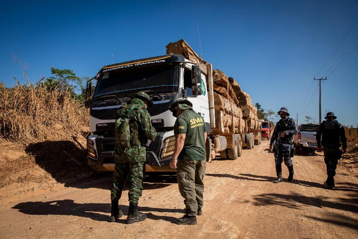 Operação Amazônia aplica R$ 938 mil em multas por desmatamento ilegal em sete propriedades de Marcelândia (MT)