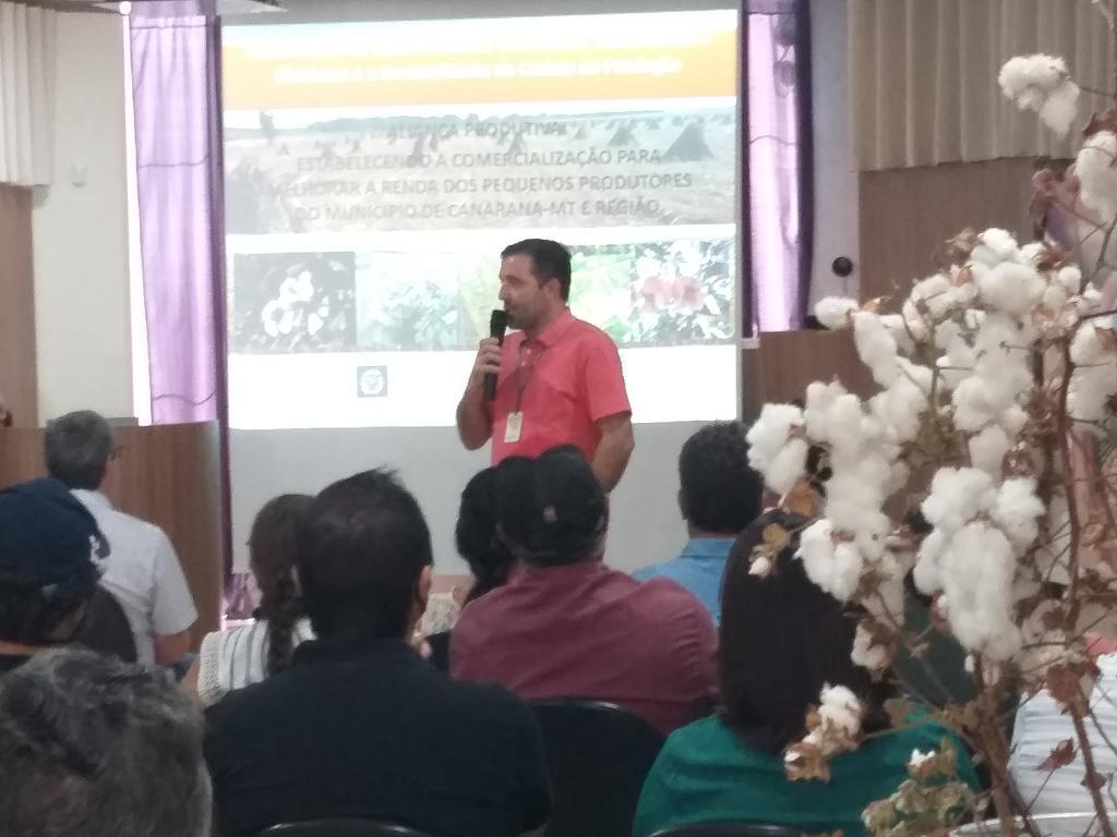 Produção de algodão agroecológico em Canarana (MT) é destaque e atrai investidores do segmento