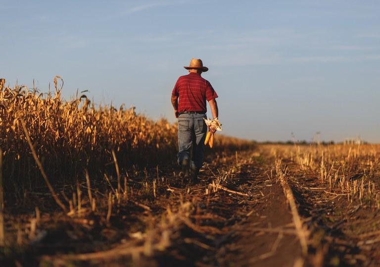 Ministério da Economia deve definir na próxima semana se libera mais recursos para o seguro rural