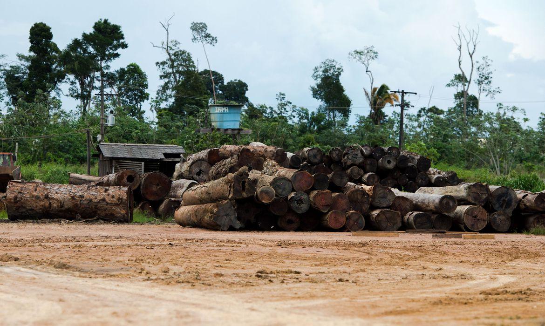 Quadro insuficiente prejudica atuação do Ibama, diz auditor do TCU